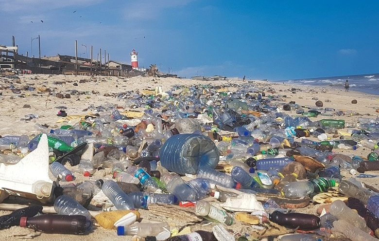 Plastic Pollution Effects on Nature